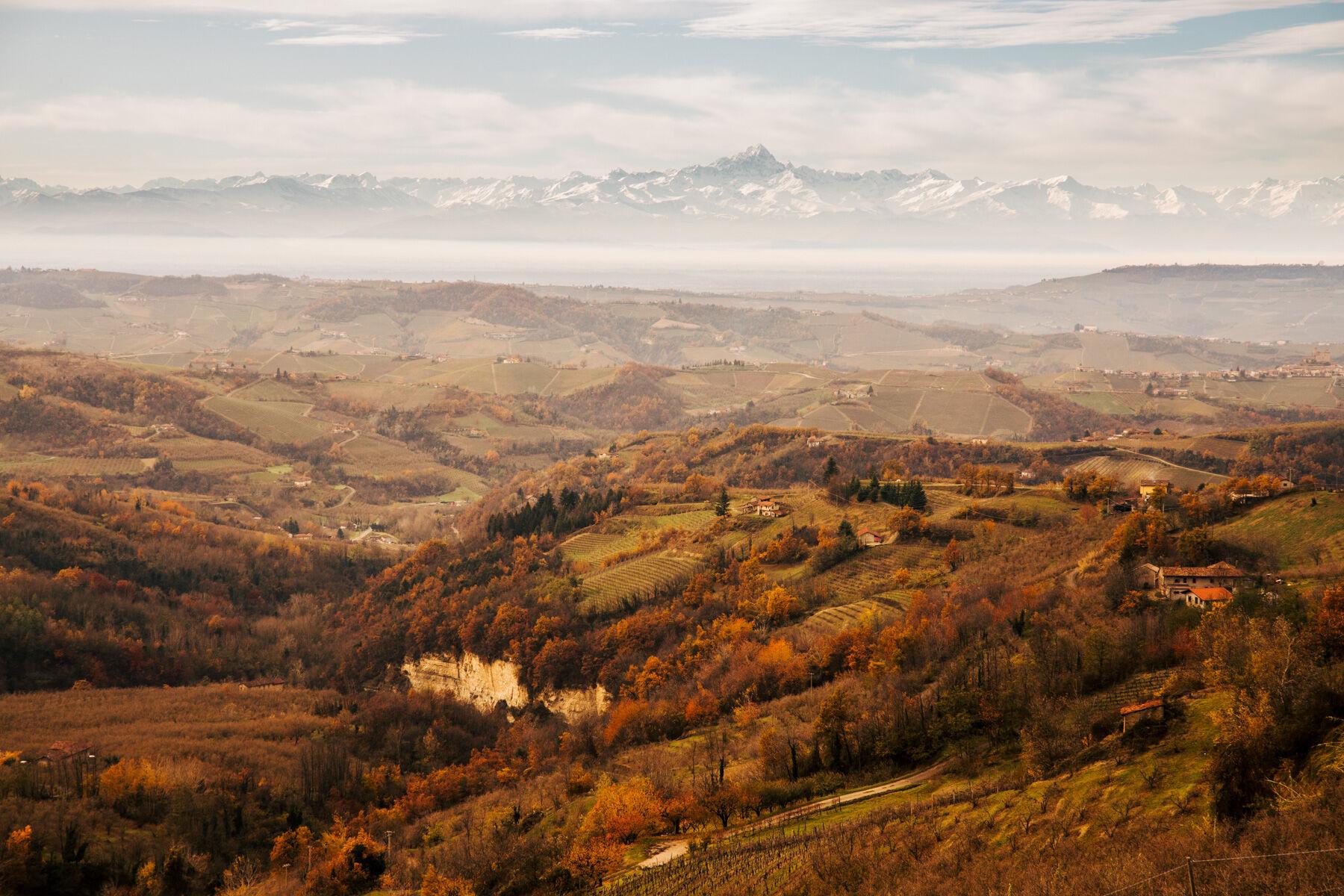 borgogno-piemonte-461