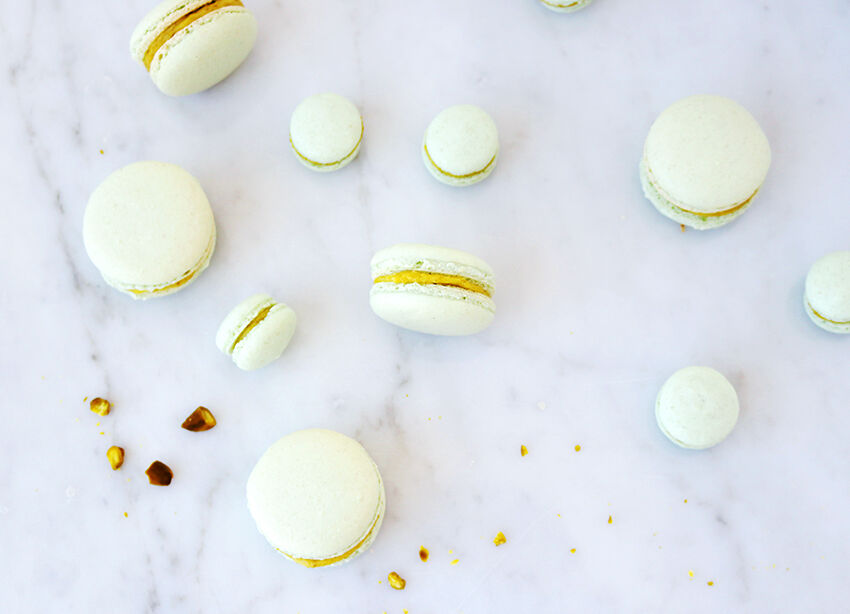 macarons pistage