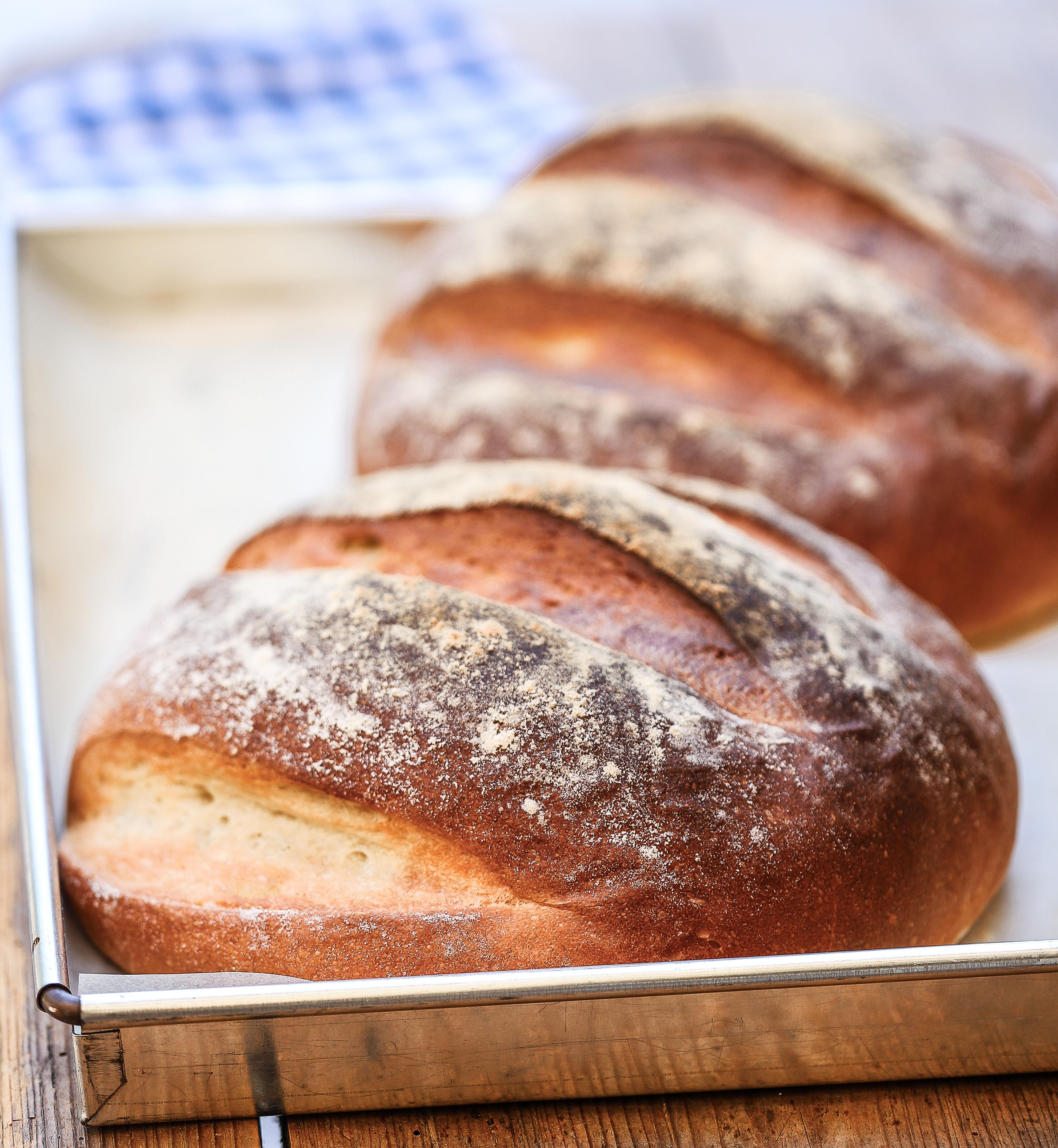 grekiskt bröd recept