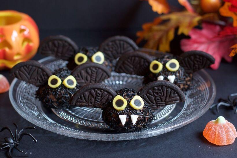 Chokladbollsfladdermöss