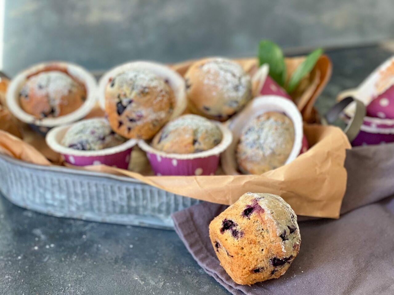 blåbärsmuffins