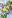 ramslökspasta, pasta med ramslök, Snøfrisk, färskost