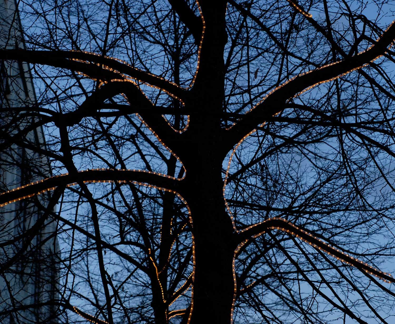 Julljus i Berlin