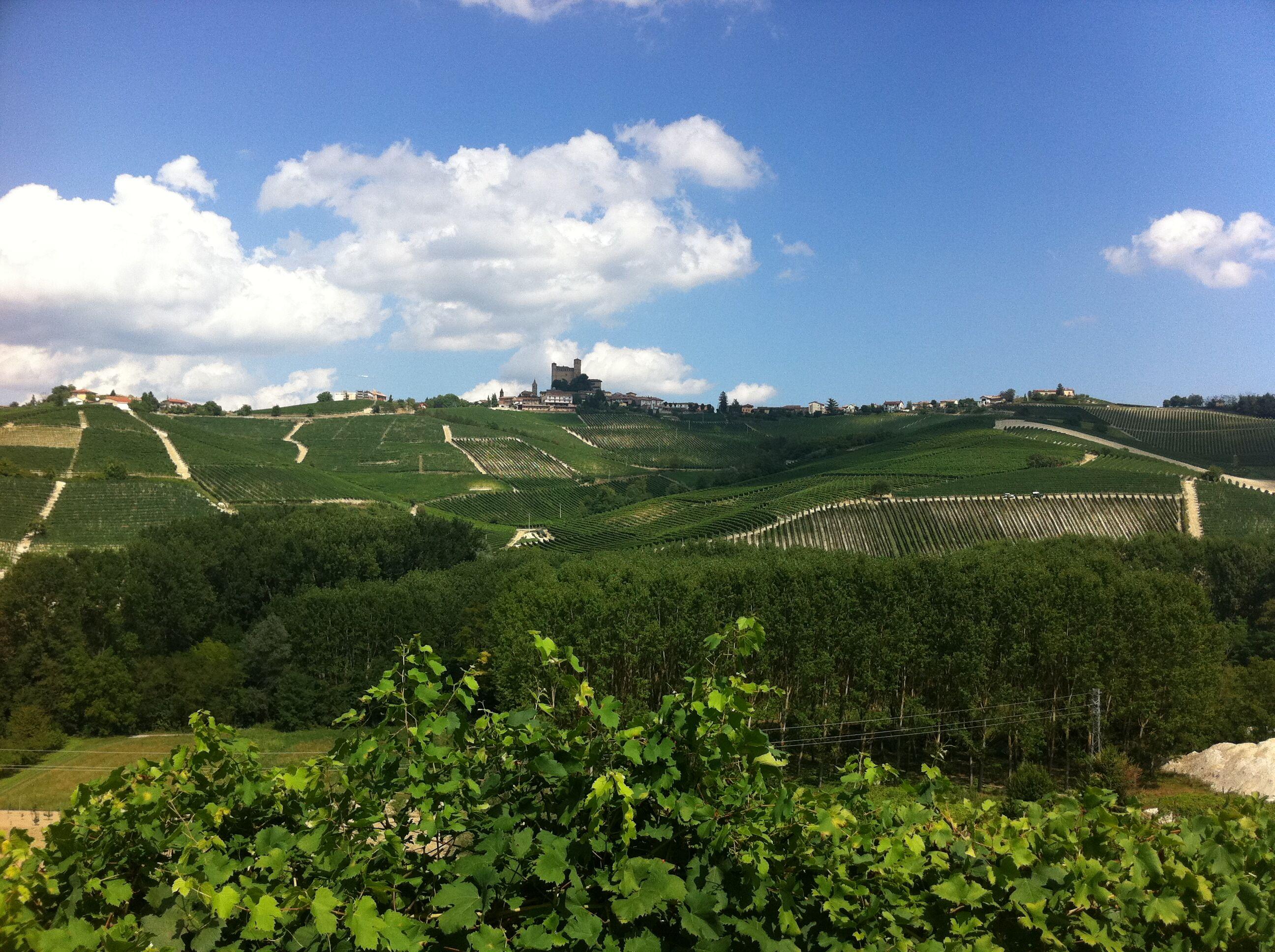 Barolo in Piedmont