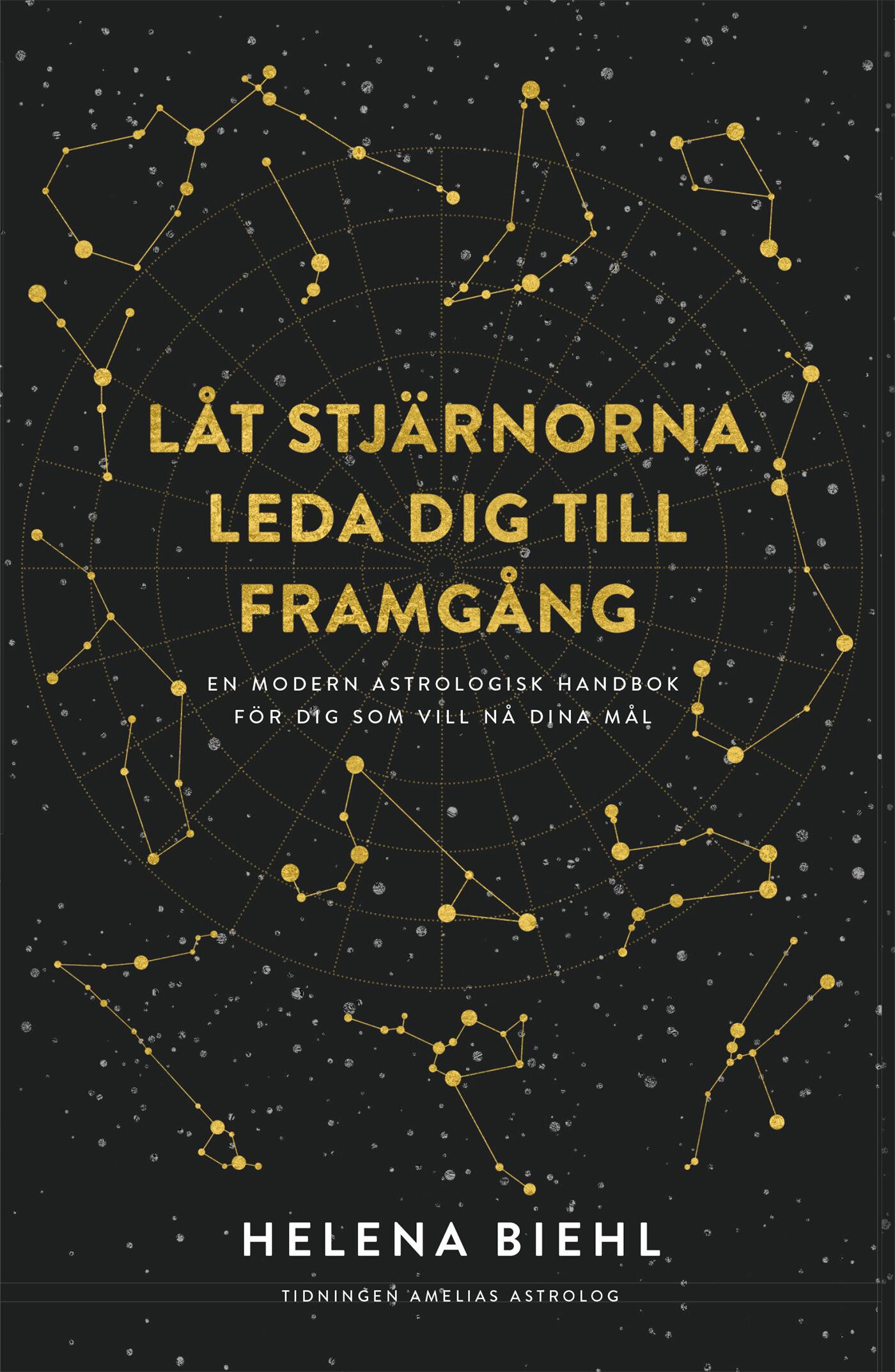SE Stjärnorna-som-framgångskarta.indd