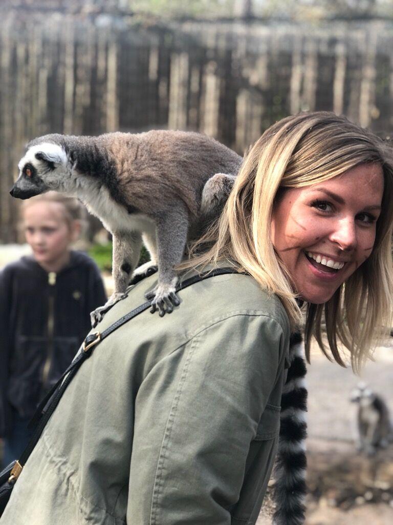 parkenzoo_lemur