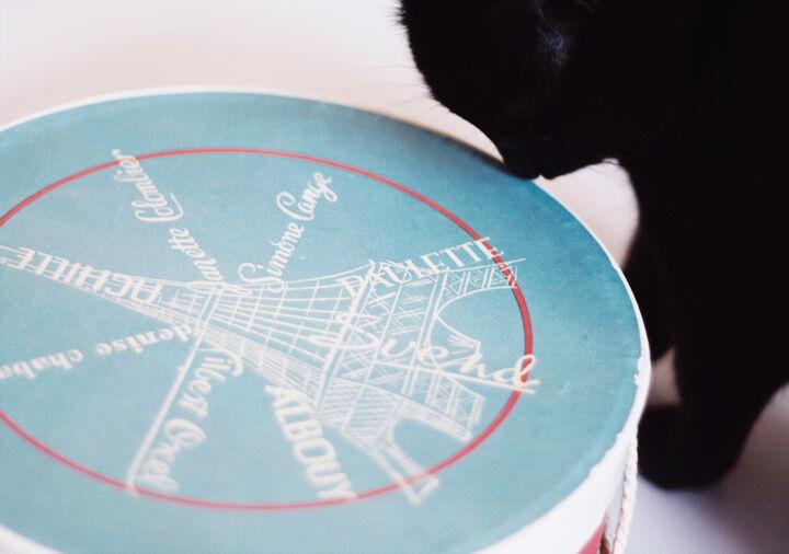 fransk hattask paris emmas vintage etsy hattaskar inredning katt