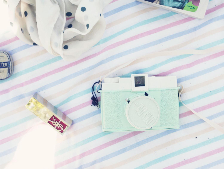 picknick picnic vintageblogg pastell emmas vintage dianakamera diana kamera