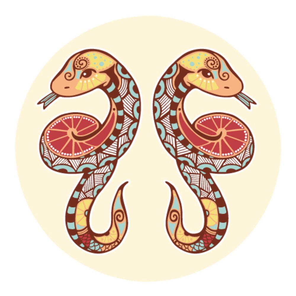 Tvilling ormar
