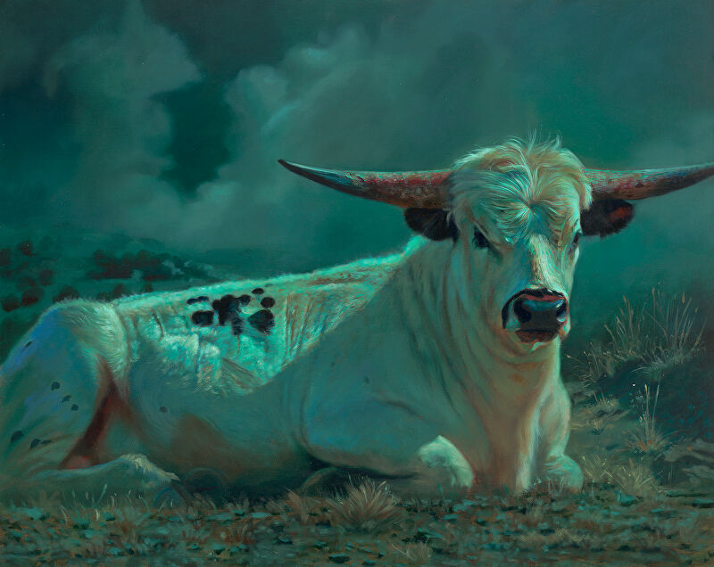 fullmoon cow