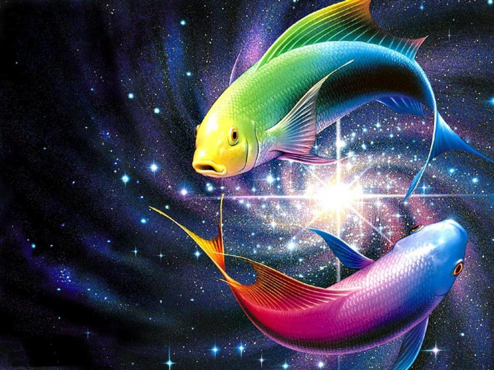 download-fish-wallpaper-fish-wallpaper-hd-download-ov-free-live-fish-full-hd-awesome-fish-backgrounds-wallpaper-wp40010507
