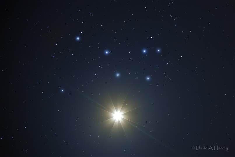 Venus stjärna