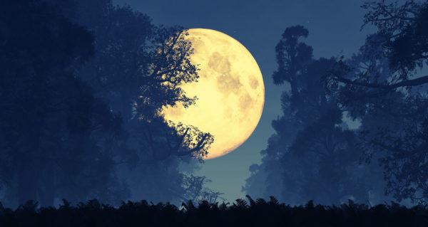 13-full-moons-AdobeStock_74645303-600x319