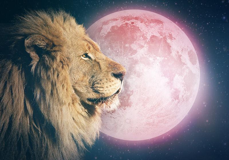 lejonfullmånen