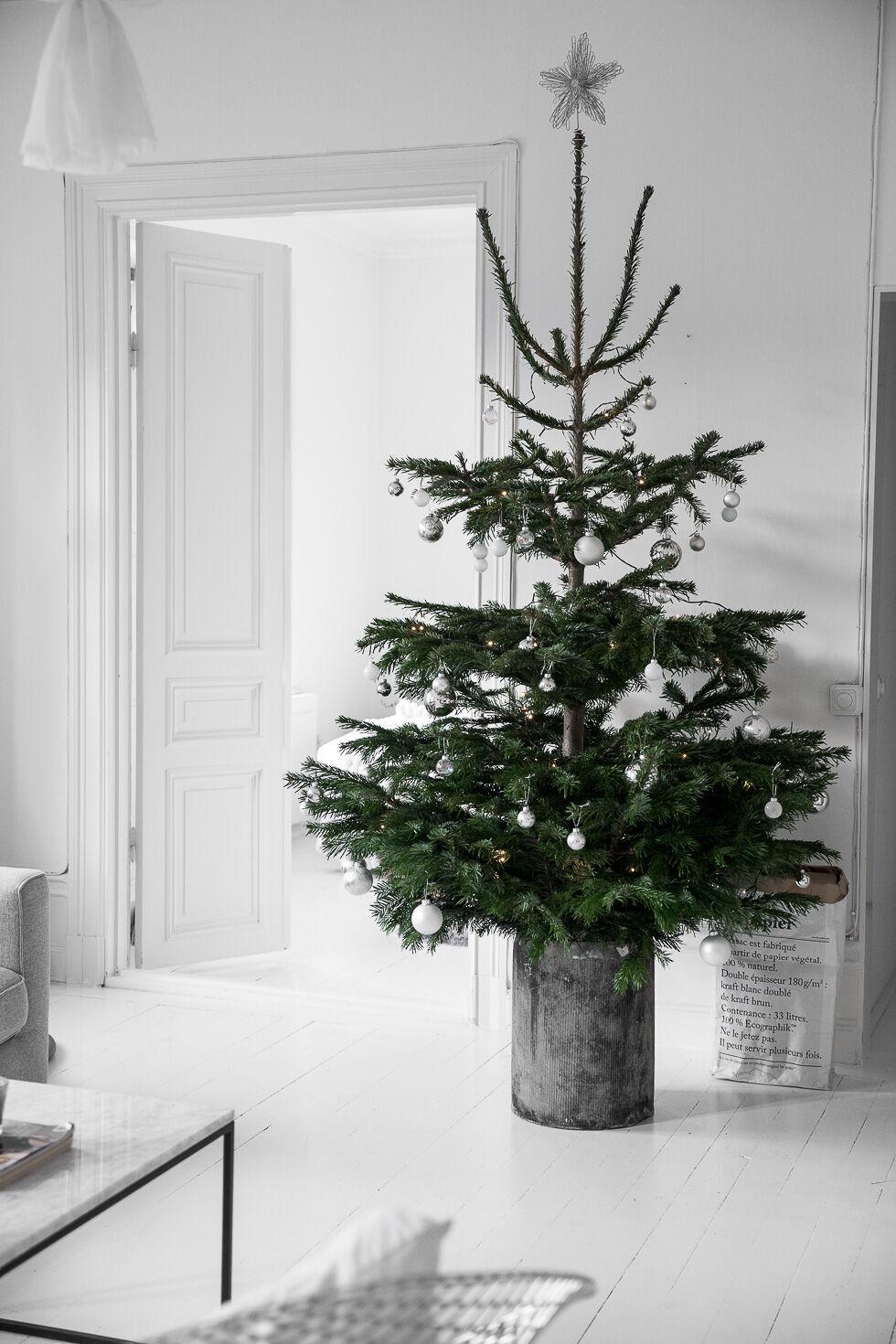 bykiki-interior-christmas1-4