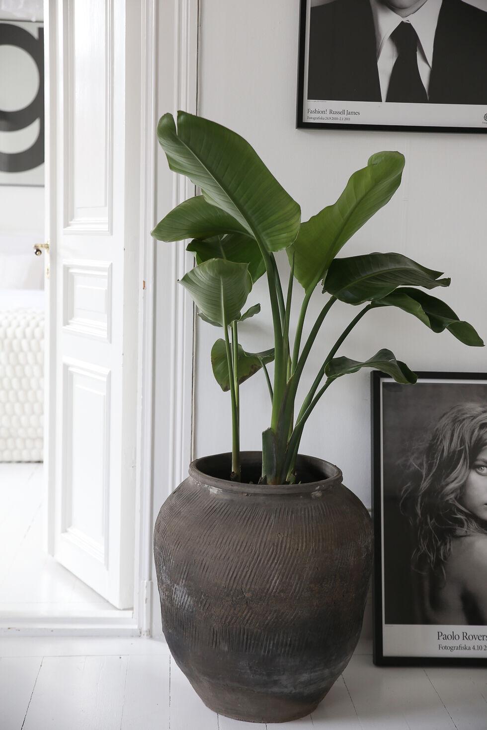 bykiki-home-interior-decoration-4