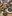 2C57A7D5-7E91-49D9-894D-3DB6ED94CC5B