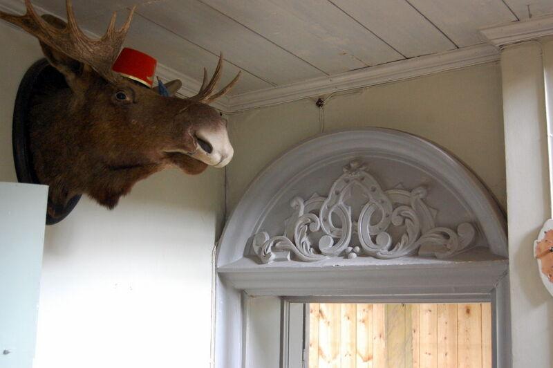 Utanför dörren till den Turkiska salongen vaktar en älg, i turkisk hatt!