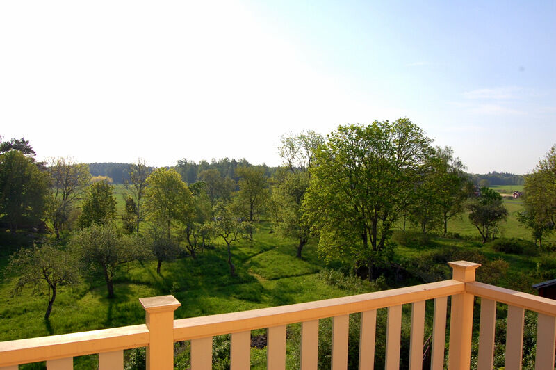 Utsikten från min balkong i slutet av maj då allt är krispigt ljusgrönt.