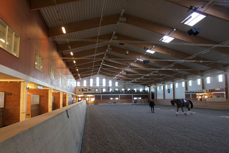Ridhuset känns enormt och ovanligt varmt för att vara på vintern.  Till vänster syns hästarnas boxar. Boxarna är uppdelade i mindre avdelningar med fyra hästar i varje avdelning. På så sett blir hästarna mindre stressade säger Sanna.
