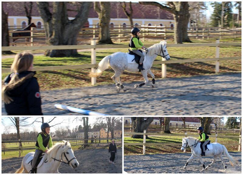 I veckan har Lovisa tagit lektion för Chanel på hennes ponny Semlan. Så roligt att se att min lilla tjej börjar bli riktigt duktig. Mycket tack vare Nyby Torshälla ridskola.