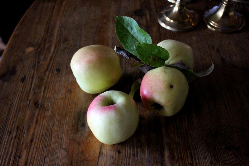 I dag provade jag äppelplockaren på mitt favoritträd som bär stora, krispiga och väldigt goda äpplen. Jag tror de heter Signe Tillisch, eller möjligtvis Filippa. Båda är vinteräpplen och går bra att lagra. Det blev två fulla papperskassar med vackra äpplen som ska få mogna i matkällaren.