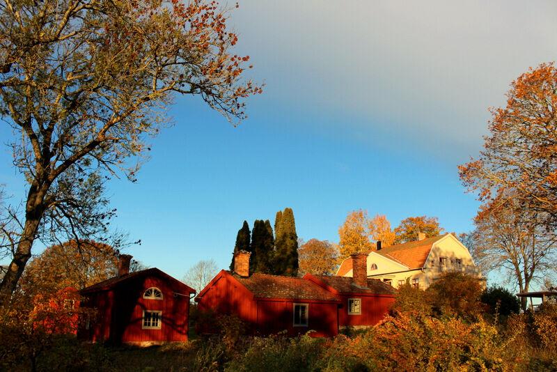 Oktobers varma morgonljus. Önskar er en fin fredag!