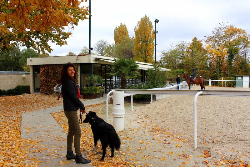"""Tillsammans med min före detta """"belle-sœur"""" Gavina passade jag på att besöka hästlubben L'etrier De Paris. L'etrier ligger i Bois de Boulonge, bara några få minuter från centrala Paris, och var något av mitt andra hem när jag bodde i Paris. Gavina har sin häst där och har bara tre minuters promenad dit från sitt hem."""