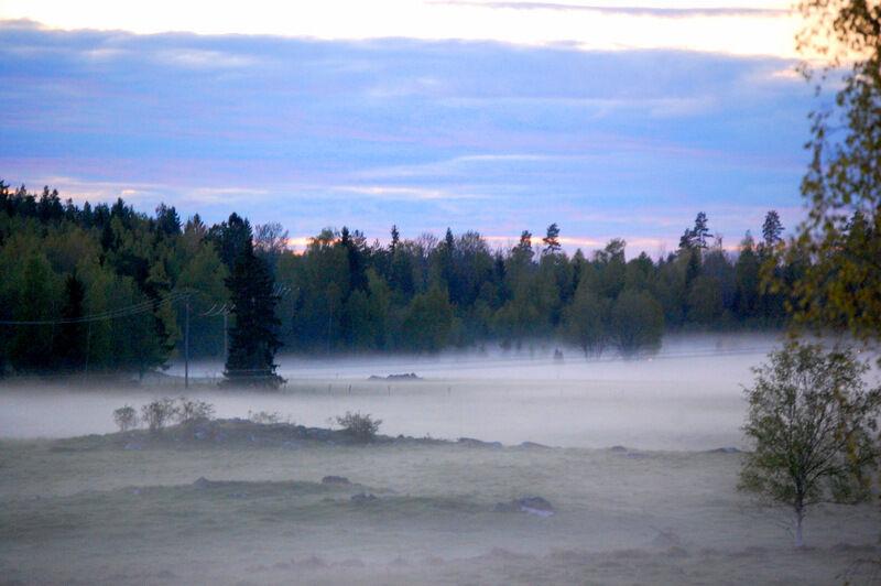 """Det är maj månad, klockan är elva på kvällen och älvorna dansar bakom prästgården.  Vi befinner oss i Holocen, vilket är den pågående geologiska epok i vilket jorden kan blomstra, kort och gott det stabila klimat som ger oss allt som vi älskar. """"Att bevara den återstående skönheten på jorden är vår viktigaste uppgift"""", säger professor Johan Rockström.  Lyssna gärna på hans program!"""