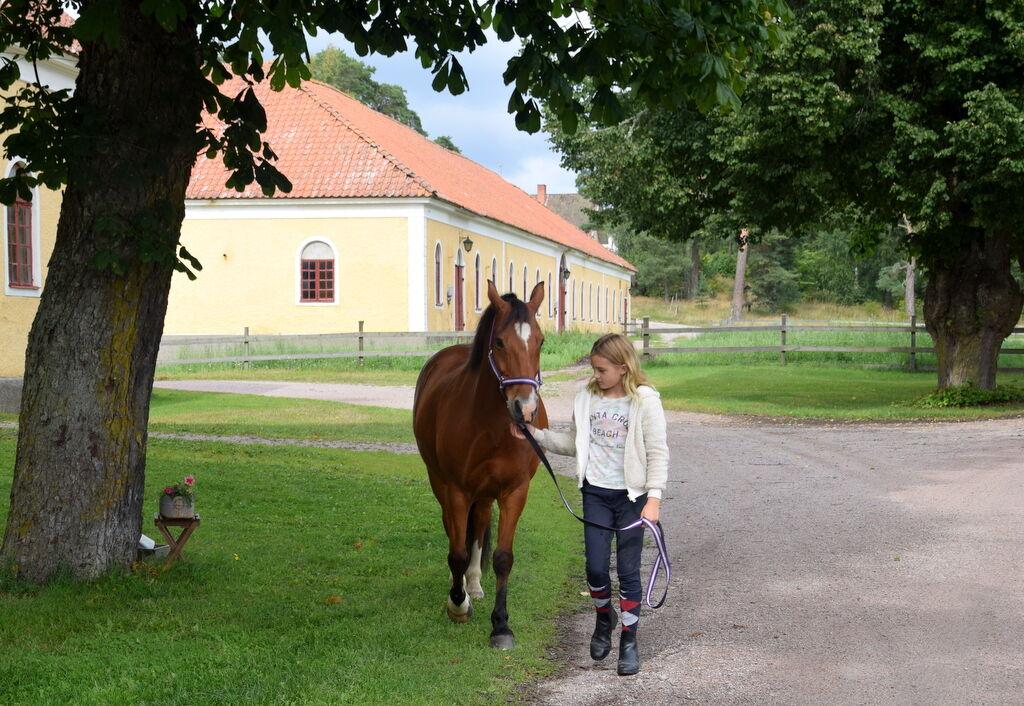 På väg till hagen, båda nöjda efter en trevlig ritt.
