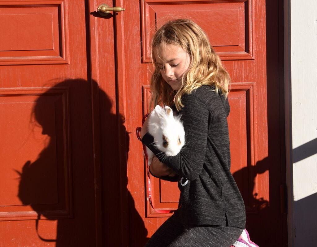 Lovisa gosar och koppeltränar med sin kanin.