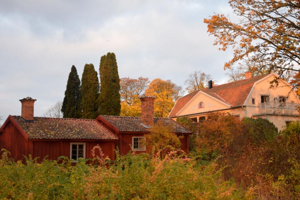 Prästgården i gyllene morgonljus.