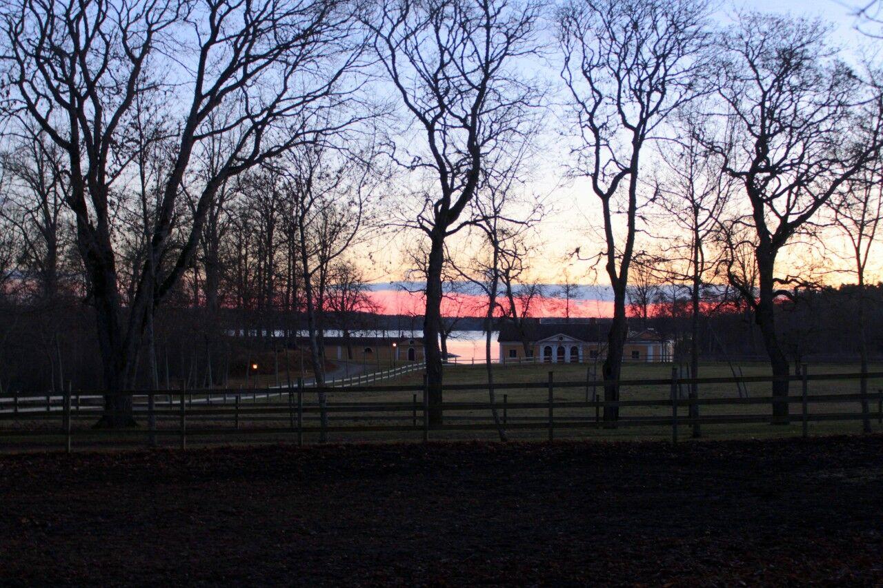 Hästhagarna och en rosa himmel ovan Hjälmaren.