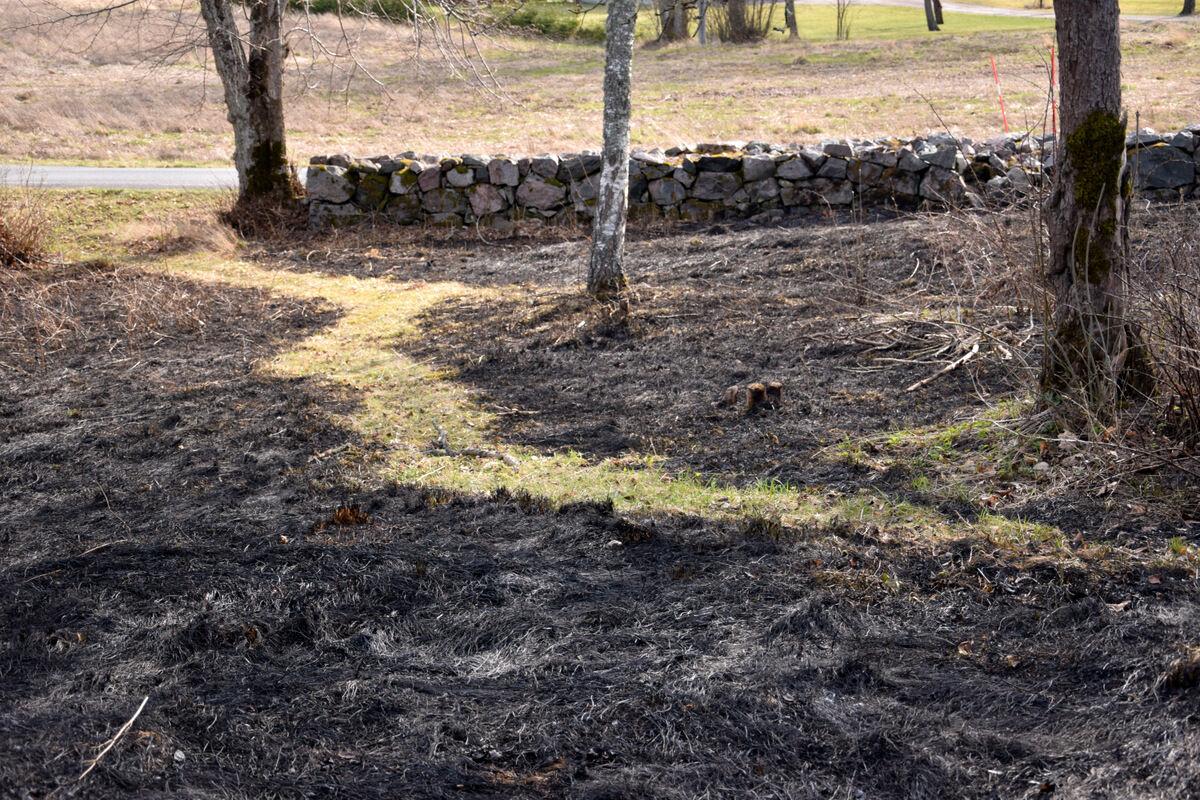 Jag klipper små trevliga gångar i gräset, vilket verkligen underlättar när jag eldar. tack vare dem kan jag styra elden.