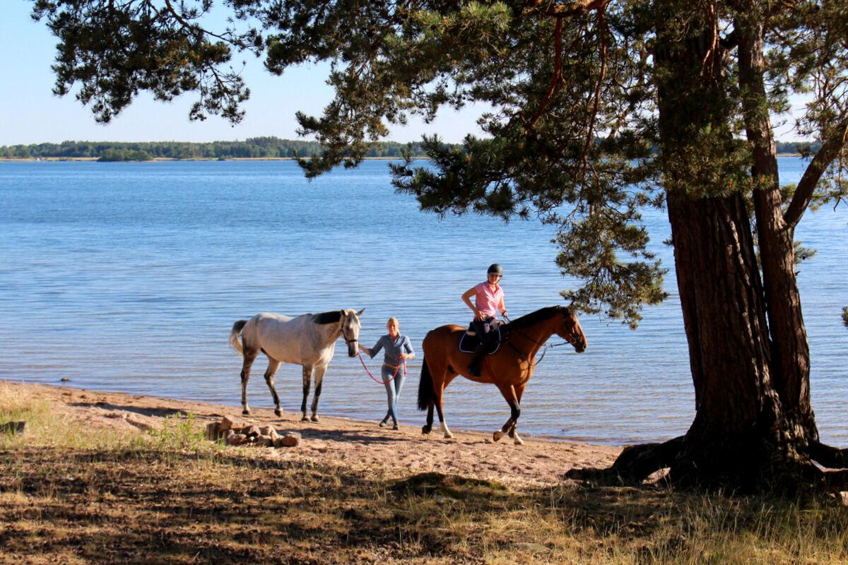Linda och dotter Anna med sina hästar.