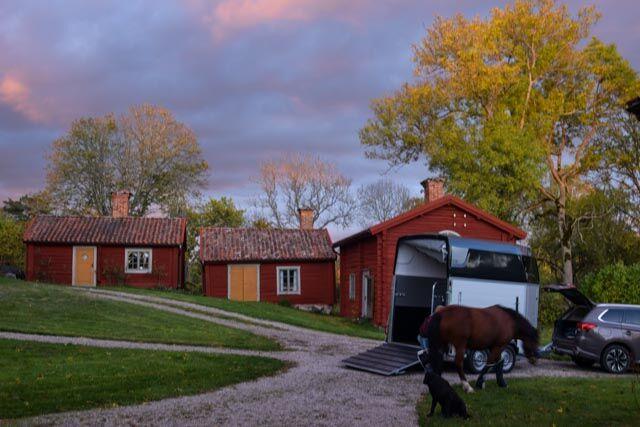 Lovisas ponny veckopendlar till Stora Sundby, men så småningom kommer han nog bo här heltid.