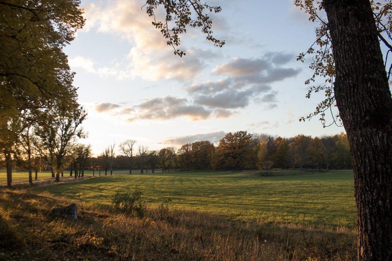 Härlig kvällssol på¨väg hem från Tidö. Det kommer bli ett eget inlägg om Slottet snart. Fin söndag på er alla!