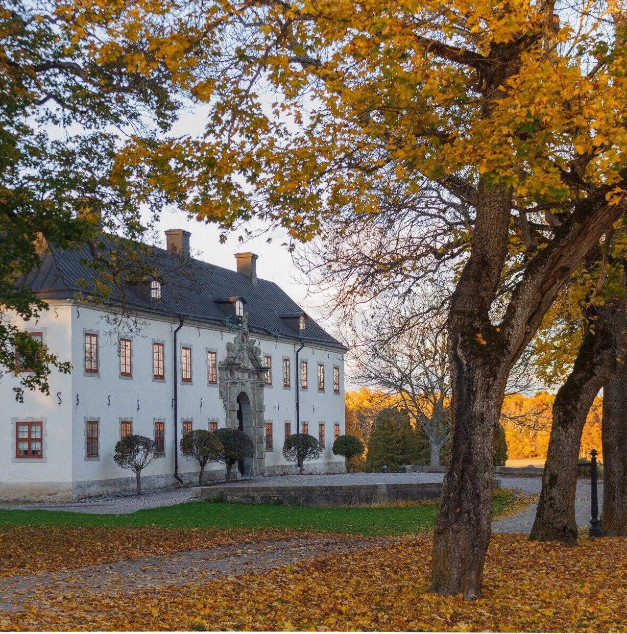 Carl-David von Schinkel d.ä förverkligade 1974 sin dröm om att öppna ett leksaksmuseum hemma på Tidö slott.