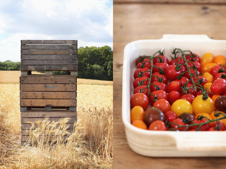 Tomater i ugn.   Ta till vara