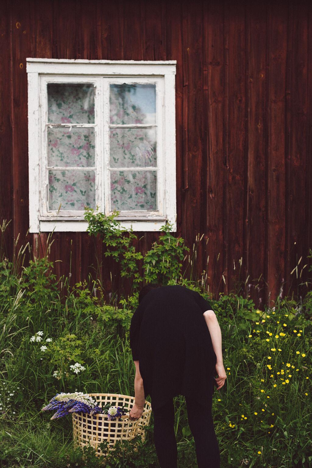 Babes_in_Boyland-Mindummer_flowers-2016-6