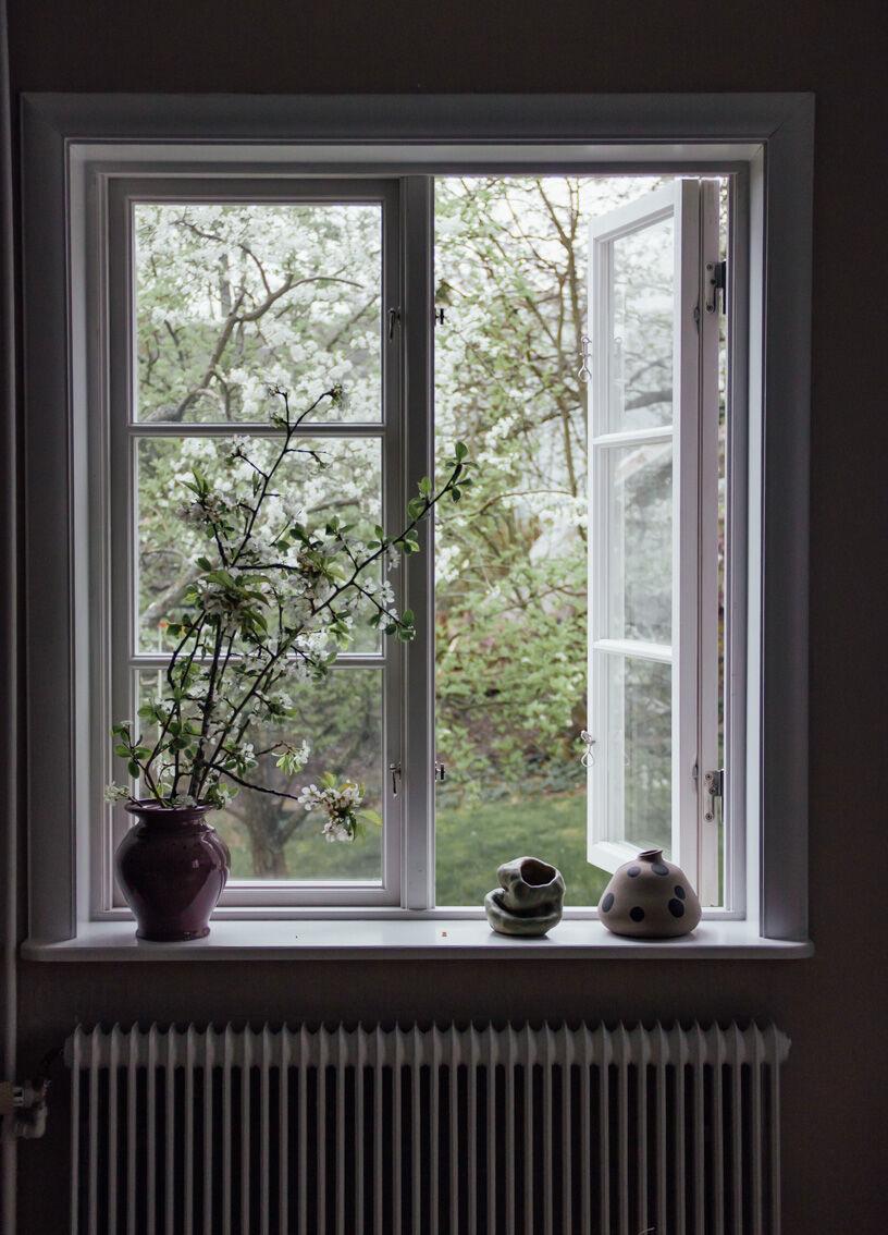 annacate-window