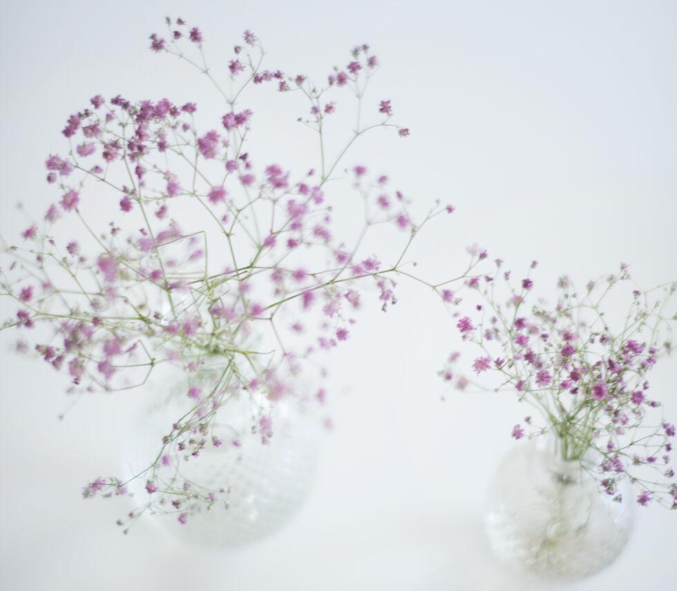 blomma_lila-brudsloja