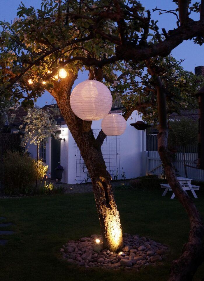 simplicity trädgård belysning 4