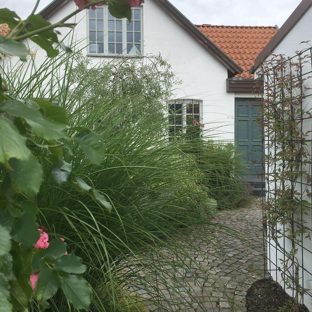 trädgård addsimplicity 2016 6