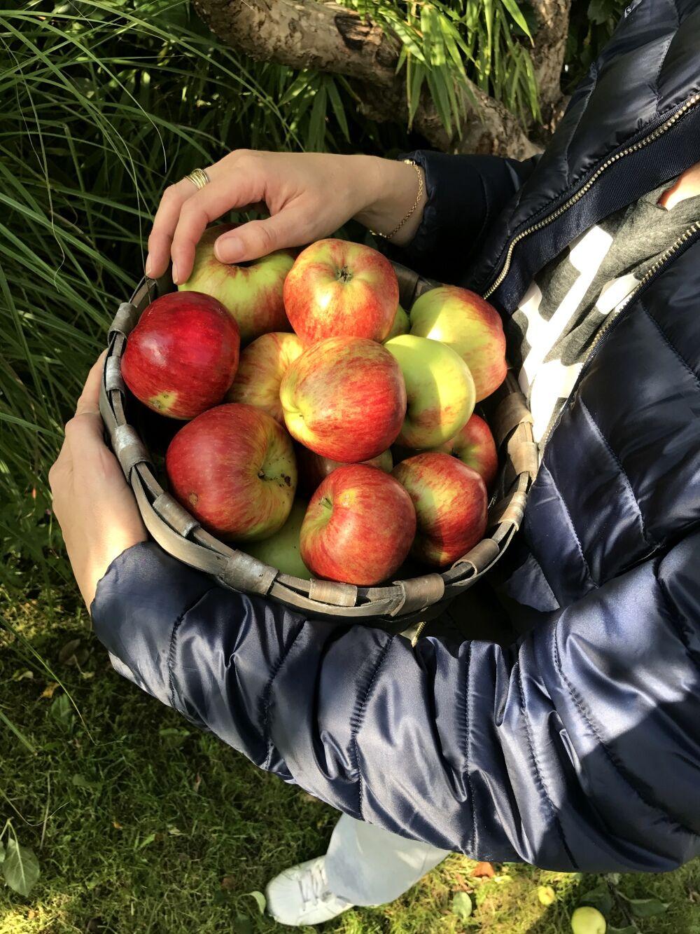 Bubbleroom addsimplicity äpple skål