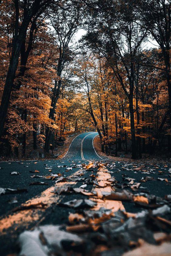 autumncozy
