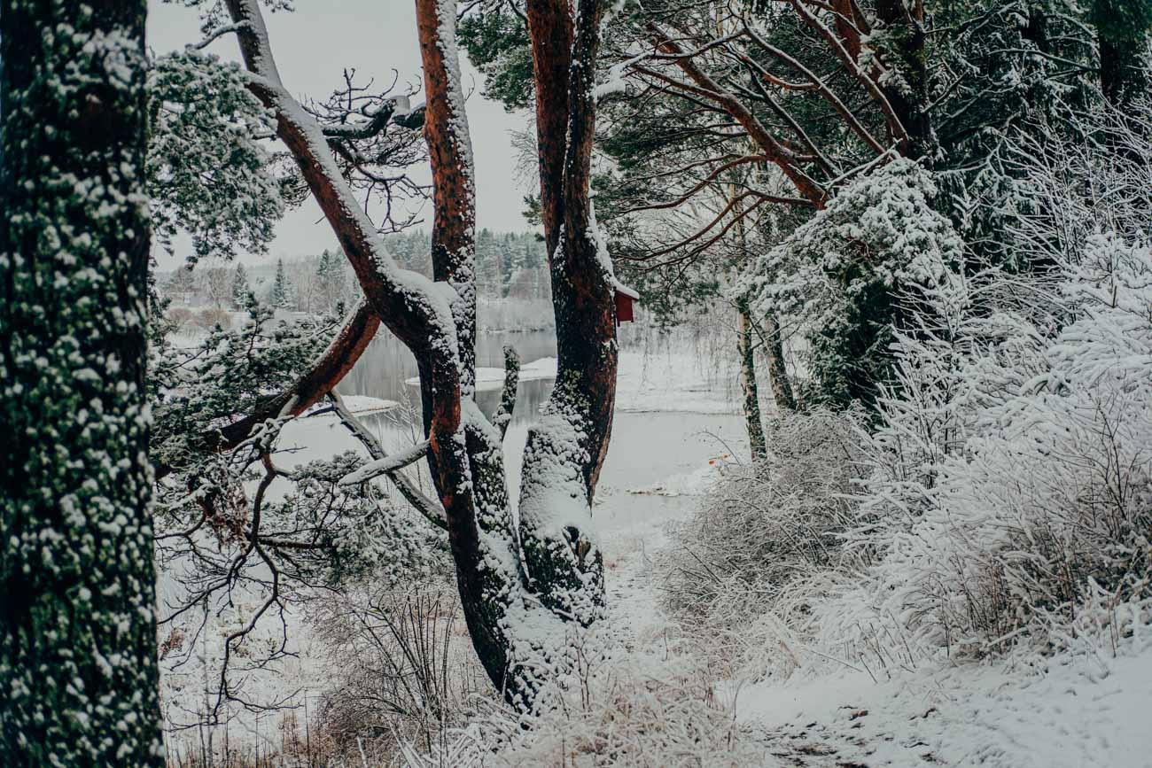 Snön-kom-till-byn-9