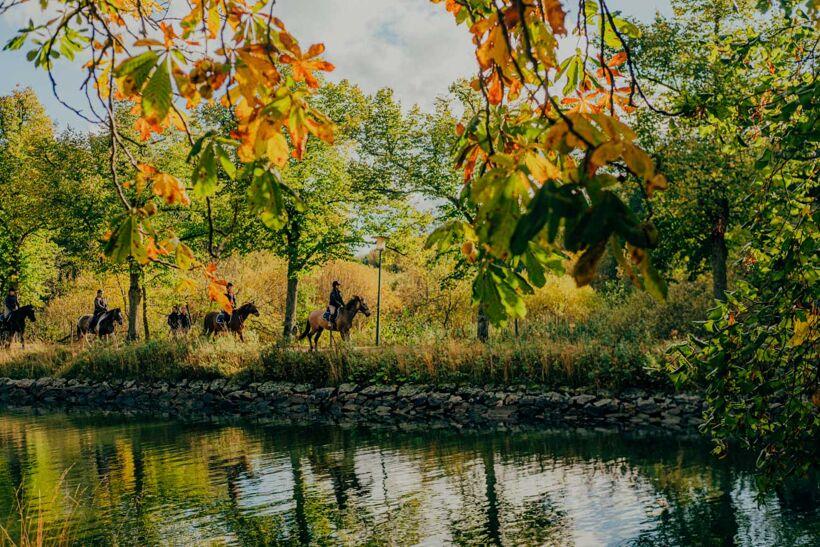 Djurgården-Oktober-3