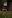 batch 2DSC_0541 tretorn höst