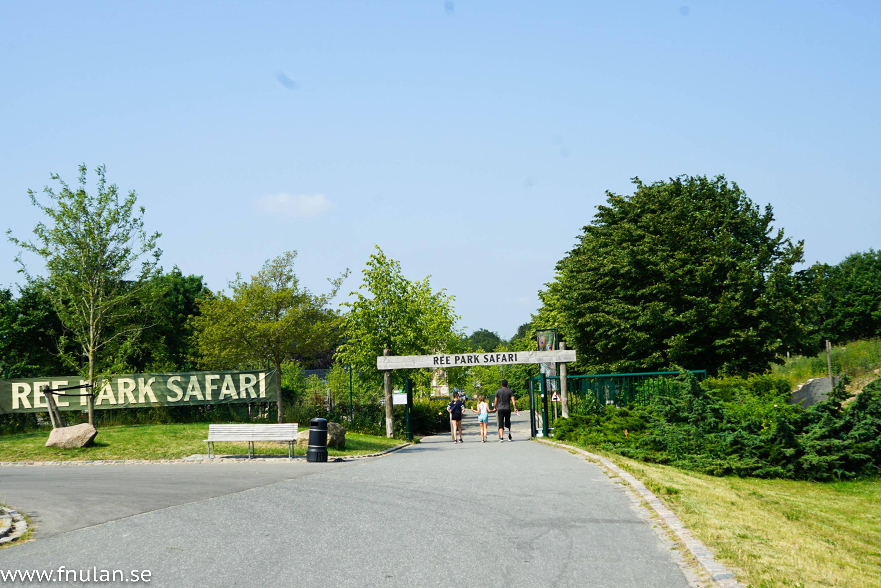 Ree park safari-5